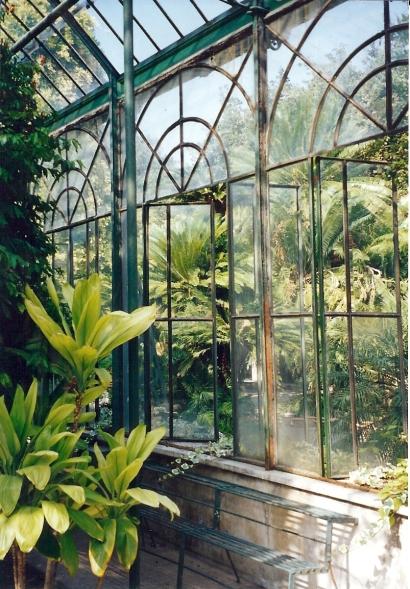 kas in de botanische tuin van Palermo
